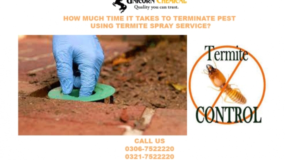 HOW much TIME IT TAKES TO TERMINATE PEST the usage of TERMITE SPRAY service?